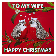 Buy Mint Publishing Wife Robins Christmas Card Online at johnlewis.com