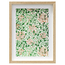 Buy William Morris - Honeysuckle Framed Print, 38 x 28cm Online at johnlewis.com