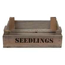 Buy Garden Trading Seedlings Tray Online at johnlewis.com