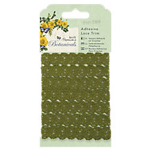 Buy Docrafts Botanicals Adhesive Lace Trim Online at johnlewis.com