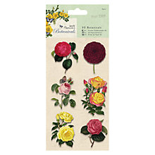 Buy Docrafts 3D Botanicals, Pack of 10 Online at johnlewis.com