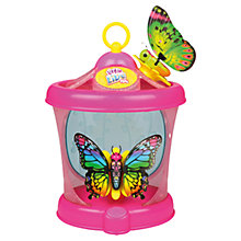 Buy Little Live Pets Butterfly House, Assorted Online at johnlewis.com
