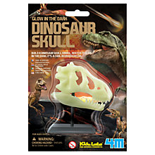 Buy Glow in the Dark Dinosaur Skull Online at johnlewis.com
