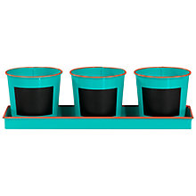 Buy Little Thoughtful Gardener My Vegetable Patch Kit Online at johnlewis.com