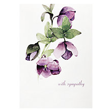 Buy Woodmansterne Lilac Hellebore Greeting Card Online at johnlewis.com