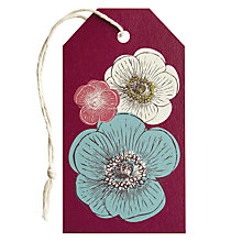 Buy Art File Poppies Gift Tag Online at johnlewis.com