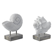 Buy Shell/Ammonite Ornament, Small, Assorted Online at johnlewis.com