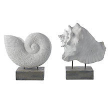 Buy Shell/Ammonite Ornament, Large, Assorted Online at johnlewis.com