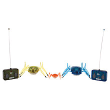 Buy Hexbug Scarab XL, Assorted Online at johnlewis.com