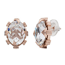 Buy Cabinet Beetle Crystal Earrings, Rose Gold / Clear Online at johnlewis.com