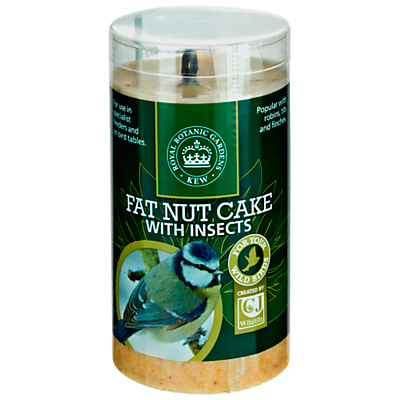 Kew Gardens Fat Nut Cake with Insects, 500ml