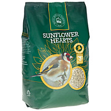 Buy Kew Gardens Sunflower Hearts Bird Feed, 2kg Online at johnlewis.com