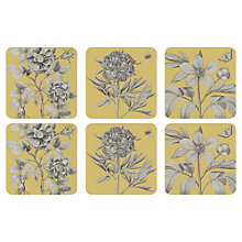 Buy Sanderson for Pimpernel Etchings and Roses Coasters, Set of 6 Online at johnlewis.com