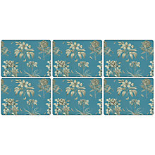 Buy Pimpernel Etchings & Roses Placemats, Set of 6 Online at johnlewis.com
