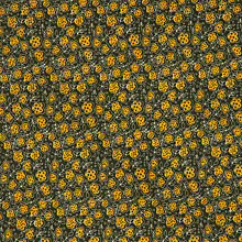Buy John Lewis Ditsy Floral Fabric, Yellow/Black Online at johnlewis.com