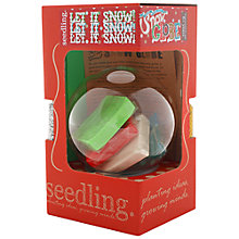 Buy Seedling Make Your Own Snow Globe Kit Online at johnlewis.com