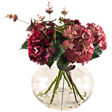 Buy Peony Hydrangeas in Bowl, Magenta/Mauve Online at johnlewis.com