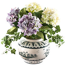 Buy Peony Blue And White Hydrangeas in Pot Online at johnlewis.com