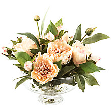 Buy Peony Peonies In Footed Bowl, Peach Online at johnlewis.com