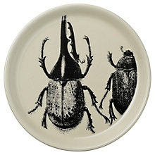Buy Day Birger et Mikkelsen Beetle Plate Online at johnlewis.com