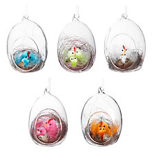 Buy John Lewis Chicks in Glass Eggs, Assorted Colours Online at johnlewis.com
