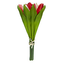 Buy John Lewis Tulip Bunch Online at johnlewis.com