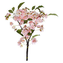Buy John Lewis Cherry Blossom Spray, Pink Online at johnlewis.com