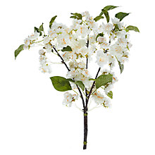 Buy John Lewis Cherry Blossom Spray, White Online at johnlewis.com
