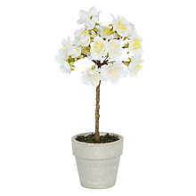 Buy John Lewis Blossom Topiary, White Online at johnlewis.com