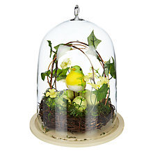 Buy John Lewis Bird and Egg in Glass Dome Online at johnlewis.com