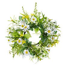 Buy John Lewis Daisy Wreath Online at johnlewis.com