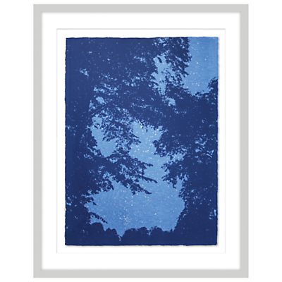 Anna Harley – Linden Tree Limited Edition Framed Screenprint, 93 x 73cm