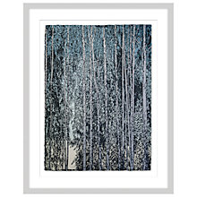 Buy Anna Hanley - Swedish Birch Limited Edition Framed Screenprint 76 x 96cm Online at johnlewis.com
