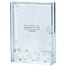 Buy Spaceform Daisies Small Frame Online at johnlewis.com