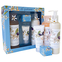 Buy Di Palomo Orange Blosson Pamper Pack Online at johnlewis.com