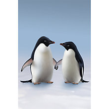 Buy 1Wall Monty and Mabel Wall Mural L2.32m X 1.58m Online at johnlewis.com