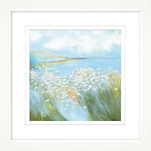 Buy Sue Fenlon - Seaside Daisies Framed Print, 57 x 57cm Online at johnlewis.com