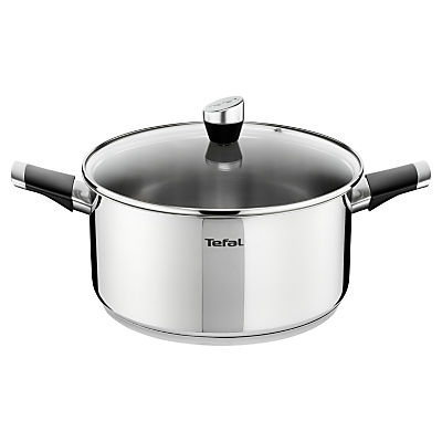 Tefal Emotion Stainless Steel Stew Pot, 24cm