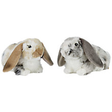 Buy Dutch Lop Rabbit Soft Toy, Assorted Online at johnlewis.com