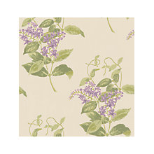 Buy Cole & Son Madras Violet Wallpaper Online at johnlewis.com