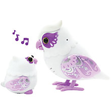 Buy Little Live Pets Tweet Talking Owl And Baby, Assorted Online at johnlewis.com