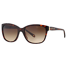 Buy Tiffany & Co TF4083 Sunglasses, Havana Online at johnlewis.com