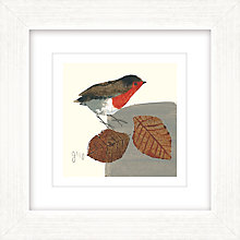 Buy Julia Burns - Red Hen Robin Framed Print, L35 x W35cm Online at johnlewis.com