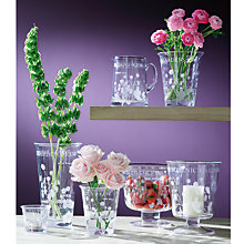 Buy Royal Botanic Kew Glassware Set Online at johnlewis.com