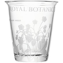 Buy Royal Botanic Kew Vase Online at johnlewis.com