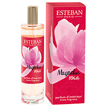 Buy Esteban Magnolia Rosa Room Spray, 100ml Online at johnlewis.com