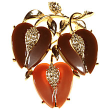 Buy Alice Joseph Vintage 1950s Lisner Gilt Plated Thermoplastic Brooch, Brown Online at johnlewis.com