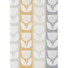 Buy Prestigious Textiles Evie Wallpaper Online at johnlewis.com