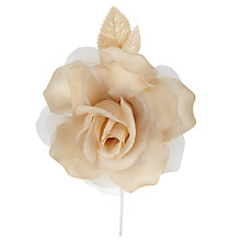 Buy John Lewis Sonia Rose Online at johnlewis.com