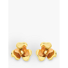 Buy IBB 9ct Yellow Gold Flower Stud Earrings, Yellow Gold Online at johnlewis.com